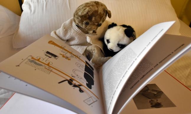 FL - toys reading