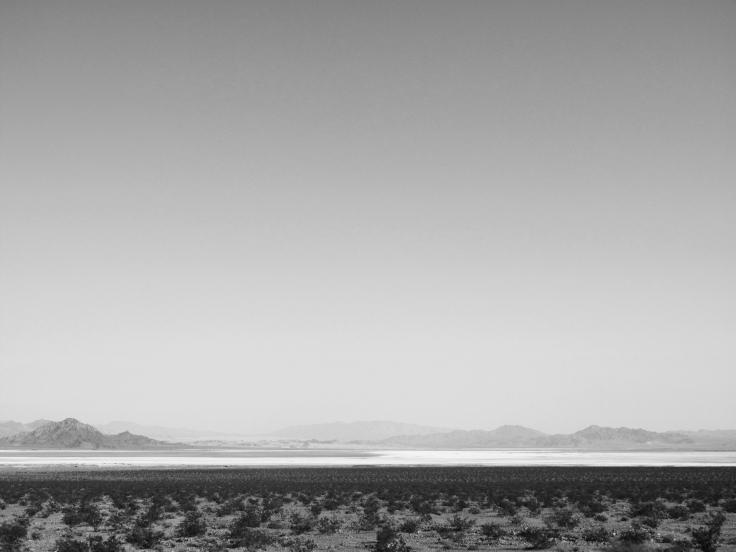 1 open landscape,Yaanga.jpg