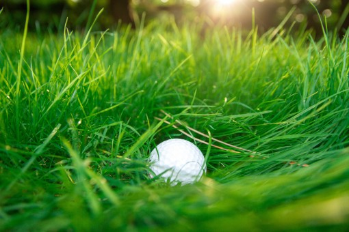 activity_recreation_balls_closeups_course_field_games_golf-265177