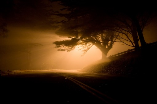 landscape_night_road_shafts_of_light_fog_eerie_dark_forest-892983