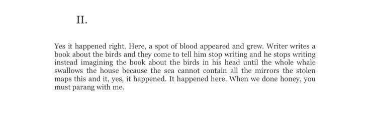 scarlet-ibis-variations-4.jpg